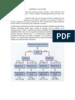 ACIDOSIS Y ALCALOSIS-bioquimica.docx