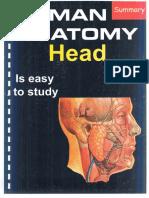 Summary of Head Dr.ihab_3