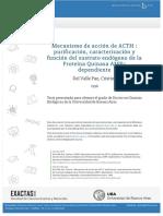 Tesis de ACTH, receptores y bioquímica