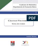 Apuntes Vectorial DFB
