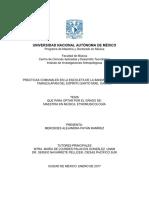Prácticas comunales en la escoleta de la banda de viento de Tamazulápam del Espíritu Santo Mixe, Oaxaca. Mercedes Payán. Tesis de Maestría en Música-Etnomusicología, FaM-UNAM. Enero de 2017