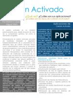 tipos de carbon.pdf