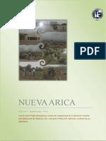 317382380 Monografia Nueva Arica