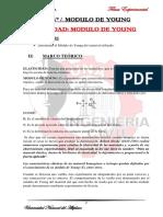 fisica2_MÓDULO_DE_YOUNG1.docx