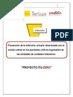 Proyecto Itu Zero 2018 2020