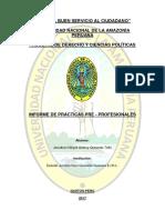 Informe de Practicas Pre Profesionales en Derecho Universidad del altiplano
