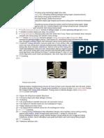 Neuro Cranium