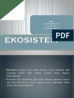 4-ekosistem22