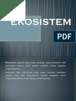 4-ekosistem