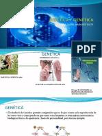 Bioética y Genética