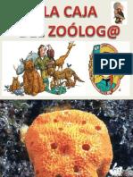 Caja Del Zoologo