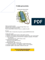 Celulaprocariota_e6927.doc
