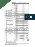 06- Cronograma Fase Constructiva Puente Santay