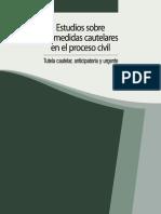 10 Estudios Sobre Las Medidas Cautelares en El Proceso Civil