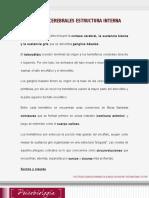 Lectura Sermana 5- Estructura Interna