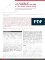 An-Overview-of-Percutaneous-Nephrolithotomy-1.pdf