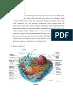 330140087 1 Fisiologi Sel Dan Homeostasis PDF
