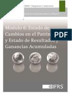 6_Estado de Cambios en el Patrimonio_2013.pdf