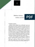STEWARD Multilinear Evolution evolucion and process