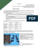 16 - Anatomia II - 08.03.2017 - R.pdf