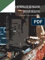 metropole de SP no inicio do seculo XXI.pdf