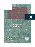 Derecho Indigena_ Mexicano.pdf
