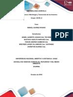 Grupo 30159_8 Tarea 2 Morfologia y Taxonomia (1)