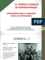 ESTÁGIO E FORMAÇÃO DOCENTE REFLEXÕES.pdf