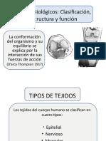 Tejidos Biolgicos Estructuray Función