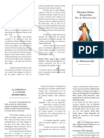 Coronilla a la Divina Mis.pdf
