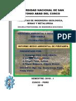 Informe Medio Ambiental de Piñipampa