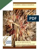 DESAFIOS_DA_PRODUCAO_DE_SEMENTES_ORGANICAS_2011.pdf