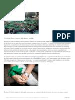 capas 6.pdf