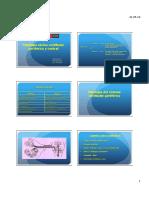 228608568 Clase 11 Patologias Vestibulares