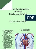 Anatomía Del Corazón. Arritmias.ecg.Ppt