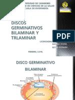 Dgb y Dgt Presentación