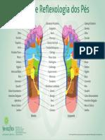 Mapa_de_Reflexologia_dos_Pes.pdf