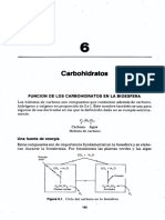 CARBOHIDRATOS OK.pdf