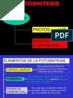 90667715 La Fotosintesis