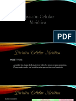 División Celular Meiótica PowerPoint 1 Yya