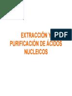 Laboratorio No 4 Extraccion de Arn