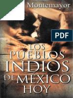 Los Pueblos Indios de Mexico Hoy PDF