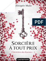 L'Heritiere Des Raeven, Tome 3 - Meropee Malo