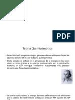 teoria quimios