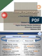 Histologis Hidung_2t