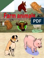 animals.pps