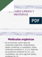 azucares lipidos y proteinas.pptx