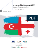 Cooperation Opportunities Between Cross-border regions of Azerbaijan and Georgia_Baseline Study