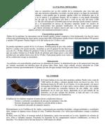 Textos Informativos 3 y 4