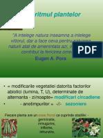 bioritmul plantelor